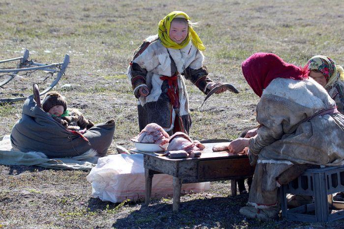 Русский Север (41 фото)
