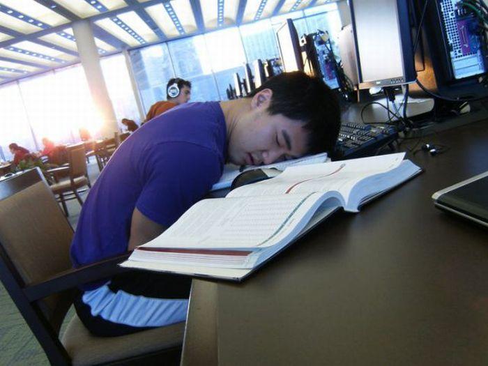 Спящие азиаты (81 фото)