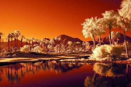 Красивые инфракрасные фотографии (75 фото)