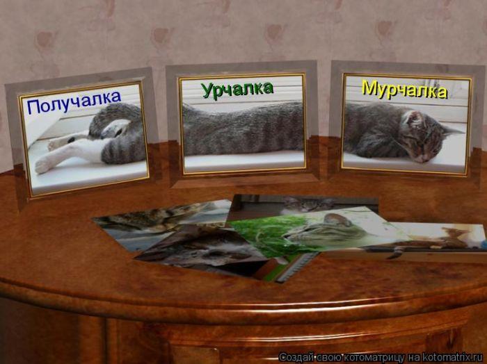 http://de.trinixy.ru/pics4/20101231/kotomatrix_07.jpg