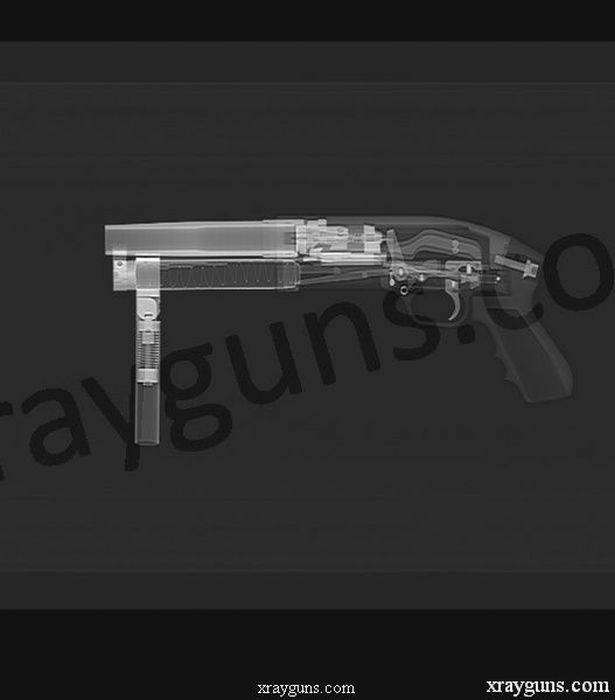 Оружие под рентгеном (16 фото)