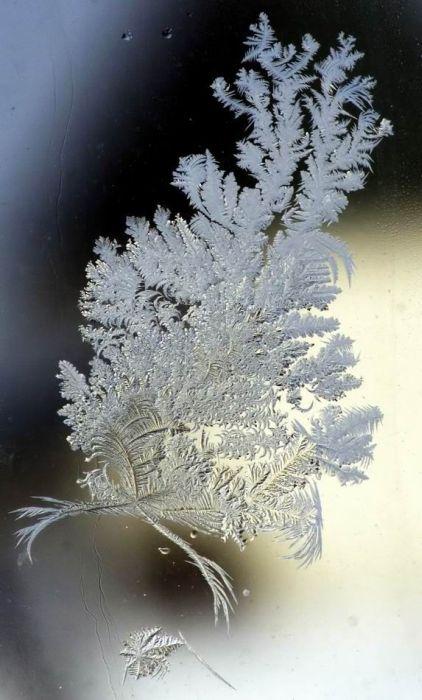 Зима рисует узоры (21 фото)