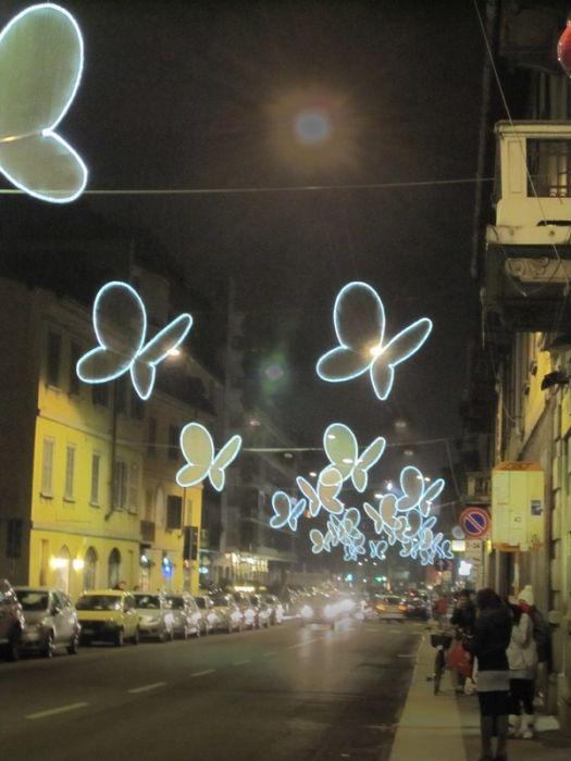 Светящиеся бабочки (8 фото)
