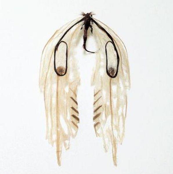 Насекомые, сделанные из человеческих волос (14 фото)