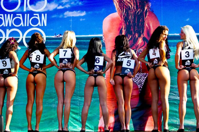 Конкурсантки шоу Мисс Reef (84 фото)