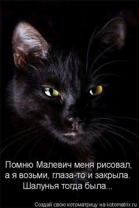 http://de.trinixy.ru/pics4/20110114/kotomatrix_42.jpg