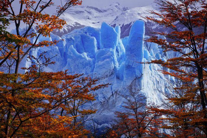 Шикарные фотографии природы (26 фото)