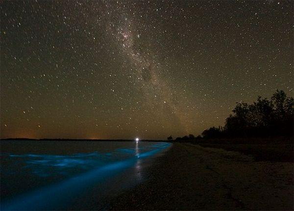 Неоновое озеро (8 фото)