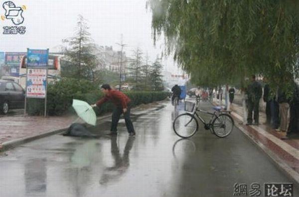 Сочувствие по-японски (8 фото)