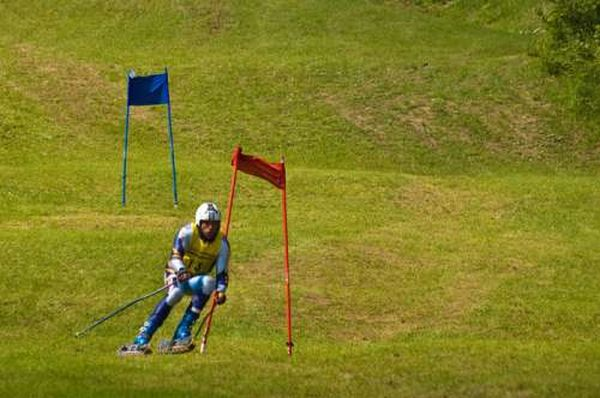 Горные лыжи на траве (21 фото)
