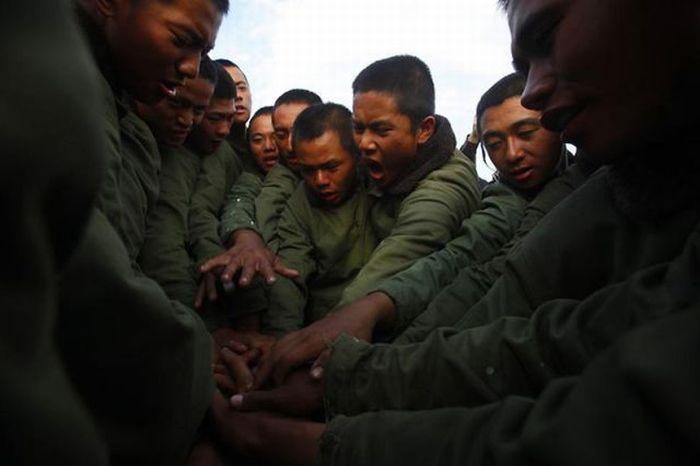 Армейский тест (15 фото)