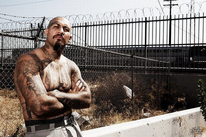 Культура Лос Анджелеса (47 фото)