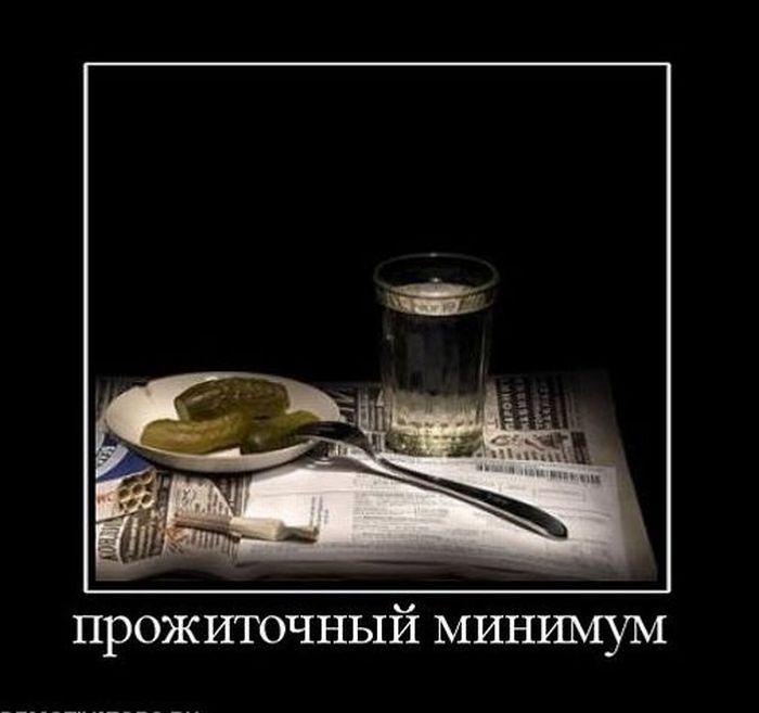 Демотиваторы (50 фото)