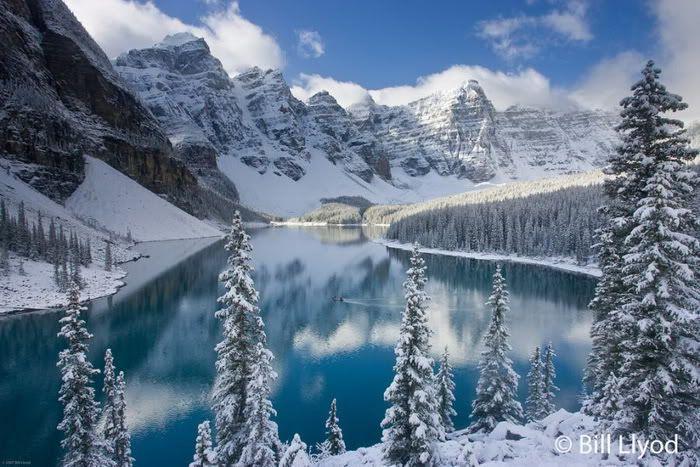 Зимние краски (20 фото)