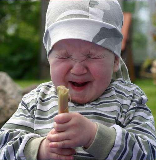 Ребенок впервые пробует ревень (6 фото)