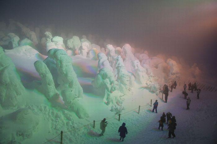 Все в снегу (25 фото)