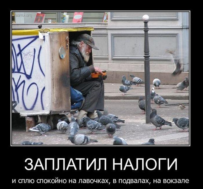 Демотиваторы (47 фото)