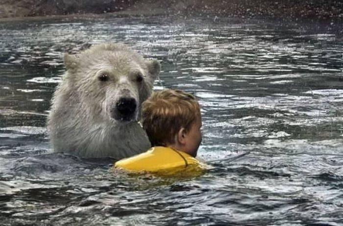 Дети купаются с медведями (6 фото)