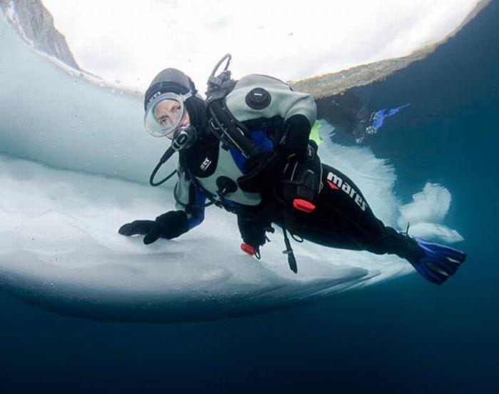 Дайвинг под толщей льда (15 фото)