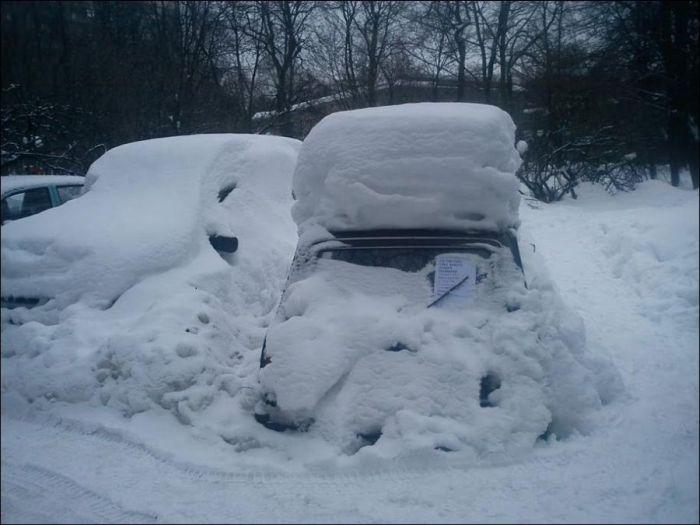 Как подработать зимой (2 фото)
