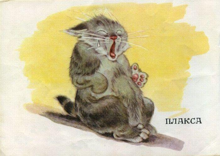 Посмотрите, какие котята (5 картинок)