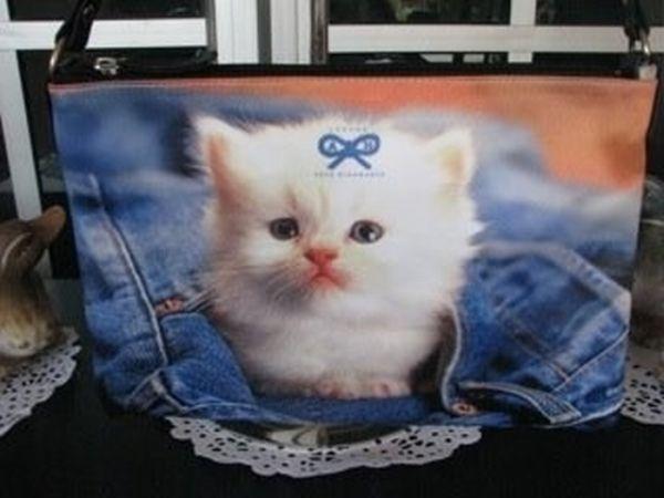 Котята в карманах (22 фото)