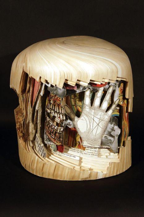 Книжная хирургия (15 фото)