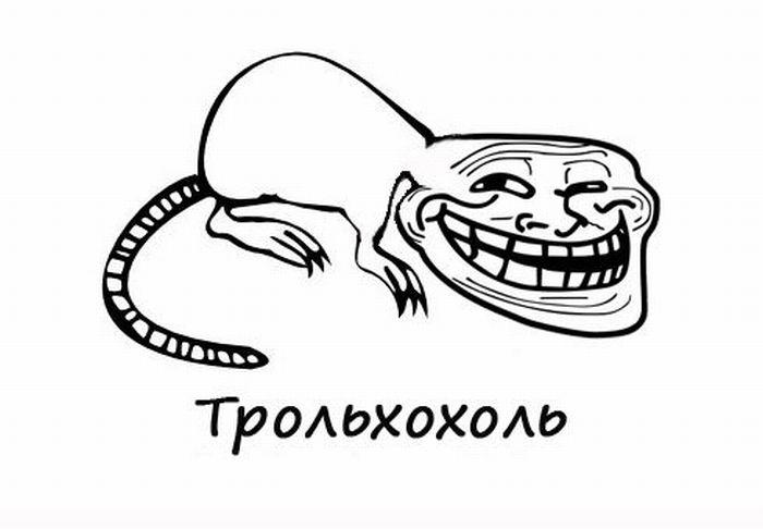 Выхухоли (41 фото)