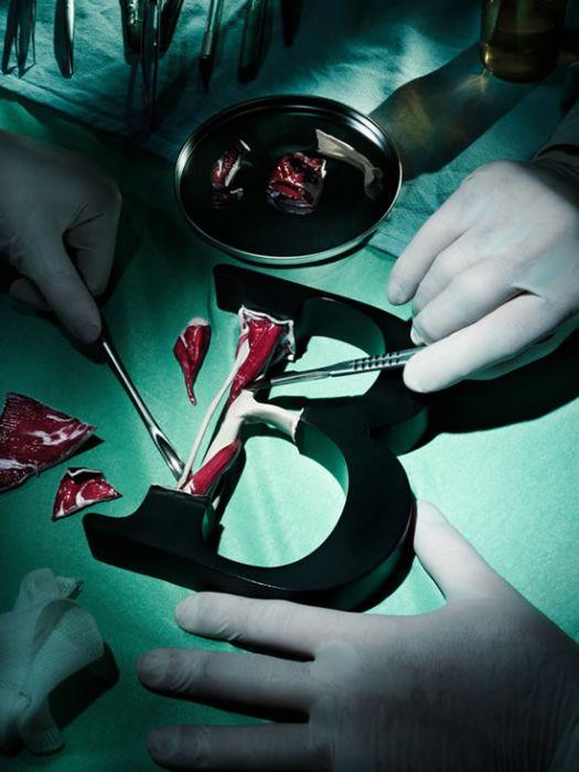 Анатомия букв (25 фото)