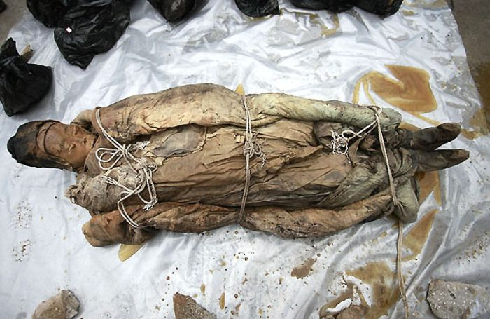 Строители нашли мумию (13 фото)