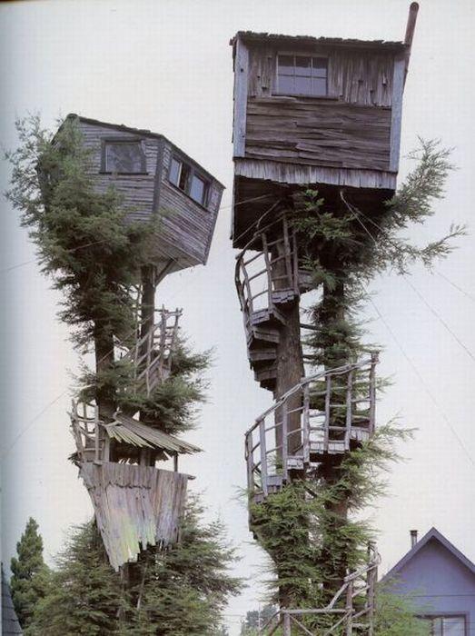 Домики на деревьях (21 фото)