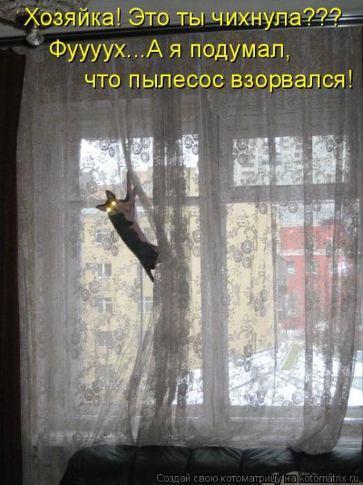 Котоматрица: Были шторы в цветочек, но уже через секунду - как только съеду вниз - будут в полосочку.