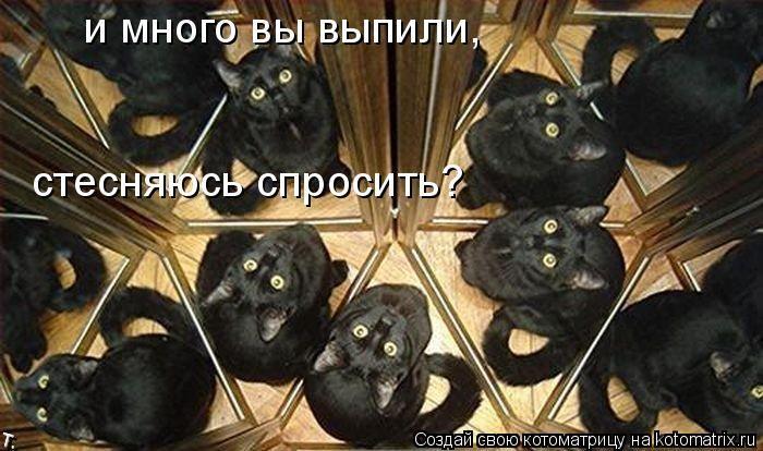 давайте посмеемся - Страница 5 Kotomatrix_26