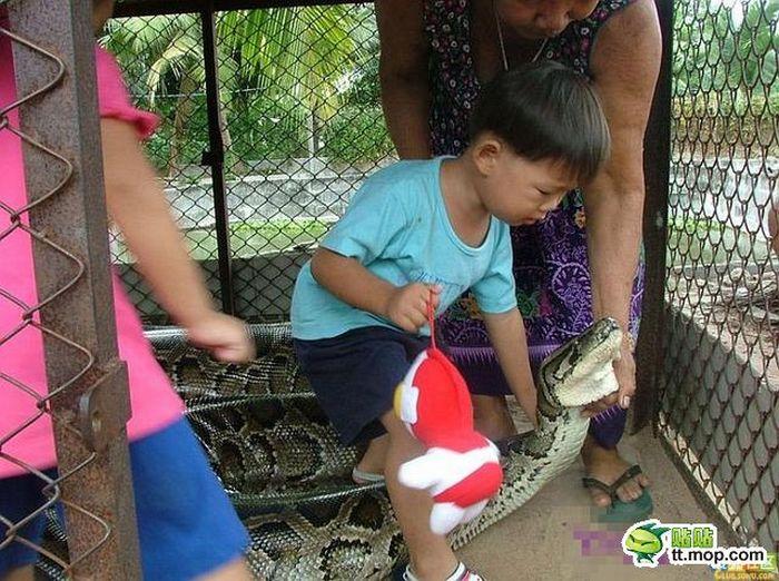 Семейный поход в зоопарк (8 фото)