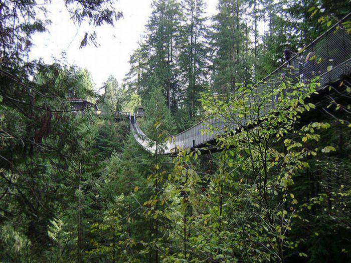 Удивительный мост (22 фото)