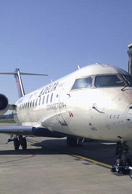 Самолет столкнулся со стаей птиц (2 фото)