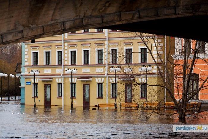 Псков превратился в Венецию (23 фото)