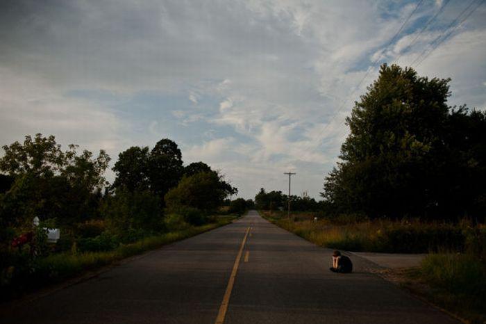 Возвращение домой (20 фото)