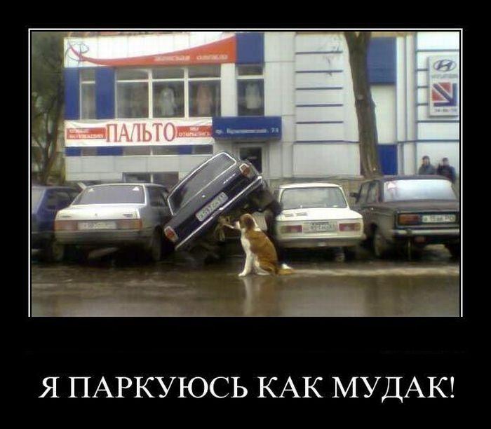 http://de.trinixy.ru/pics4/20110414/demotivatory_01.jpg