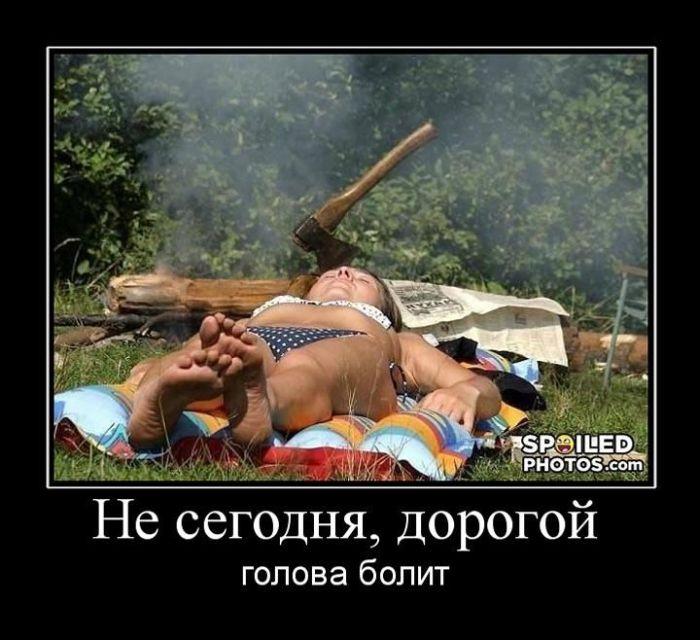 http://de.trinixy.ru/pics4/20110414/demotivatory_05.jpg