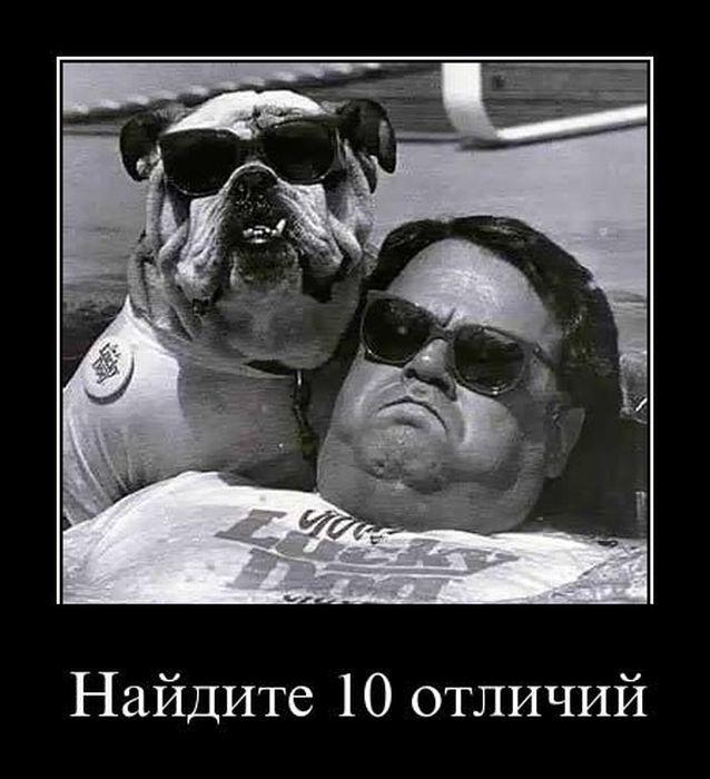 http://de.trinixy.ru/pics4/20110414/demotivatory_26.jpg
