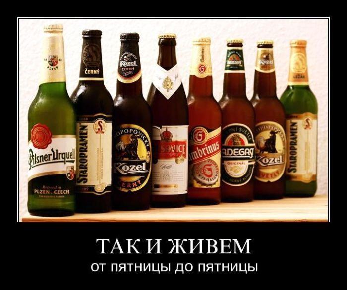 http://de.trinixy.ru/pics4/20110414/demotivatory_36.jpg