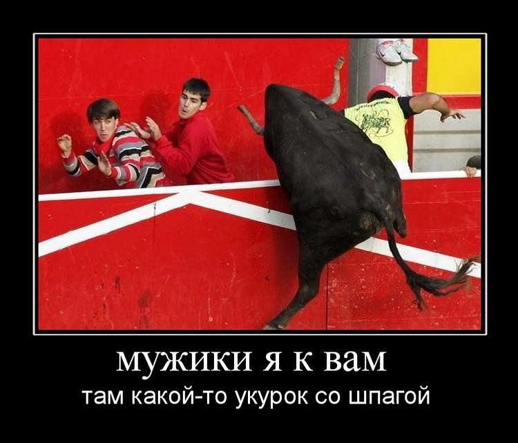 http://de.trinixy.ru/pics4/20110415/demotivatory_02.jpg