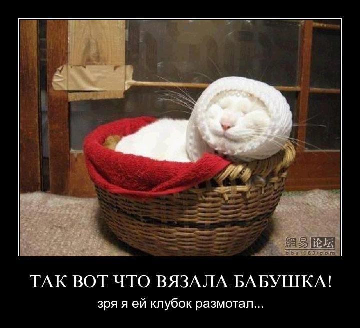 http://de.trinixy.ru/pics4/20110415/demotivatory_08.jpg
