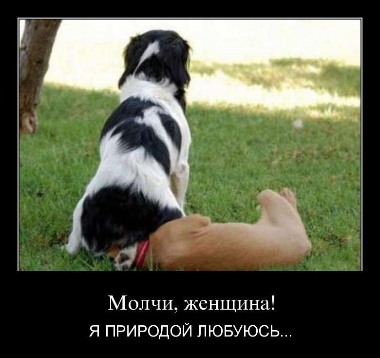 http://de.trinixy.ru/pics4/20110415/demotivatory_09.jpg