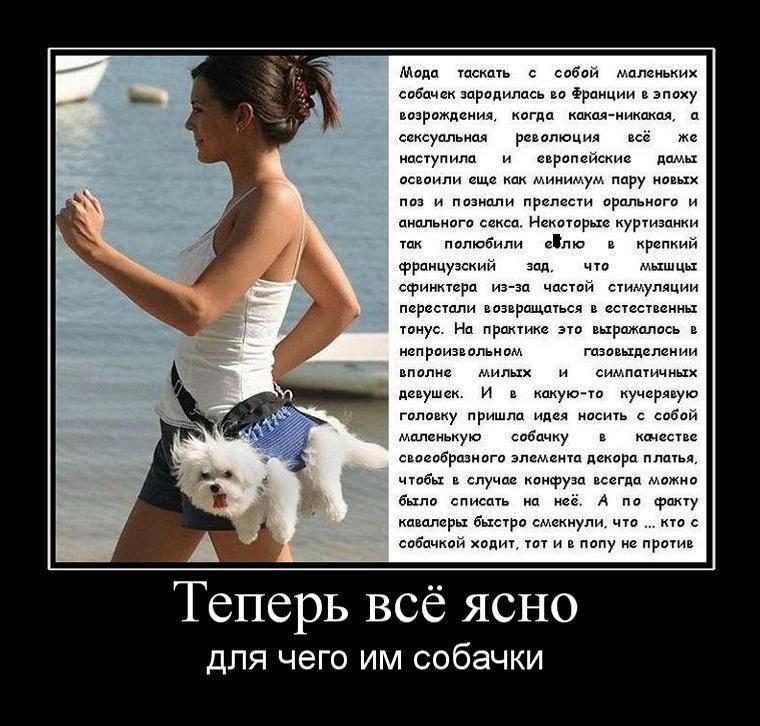 http://de.trinixy.ru/pics4/20110415/demotivatory_19.jpg