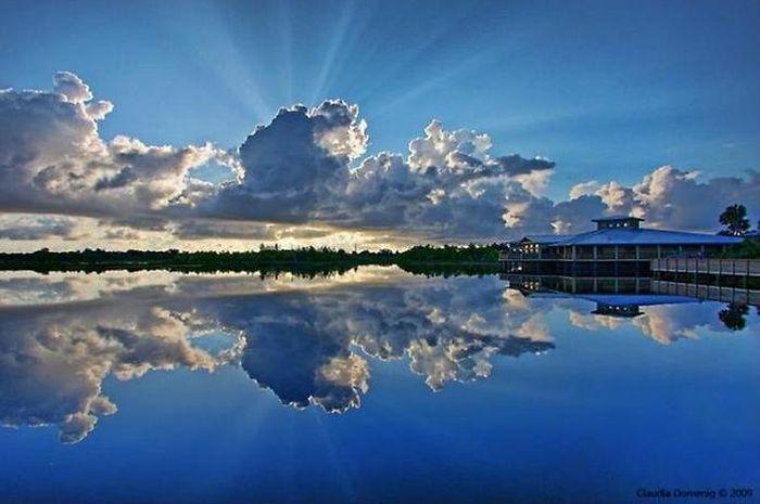 Красивые отражения в воде (37 фото)