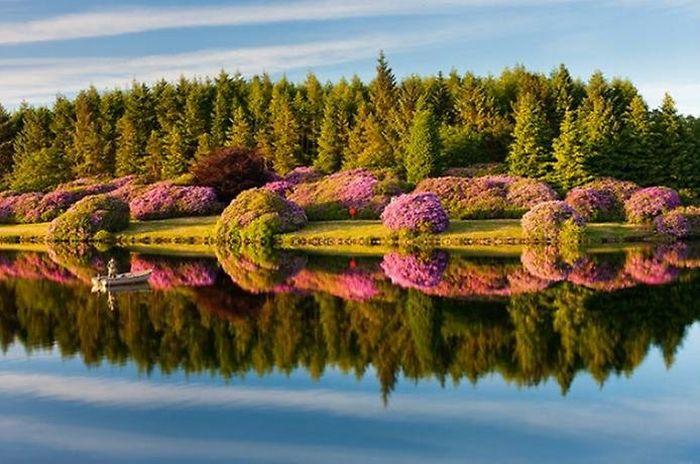 http://cdn.trinixy.ru/pics4/20110418/beautiful_reflections_in_water_27.jpg