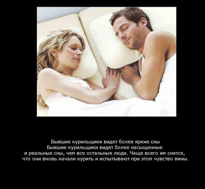 Факты про сон (9 фото)