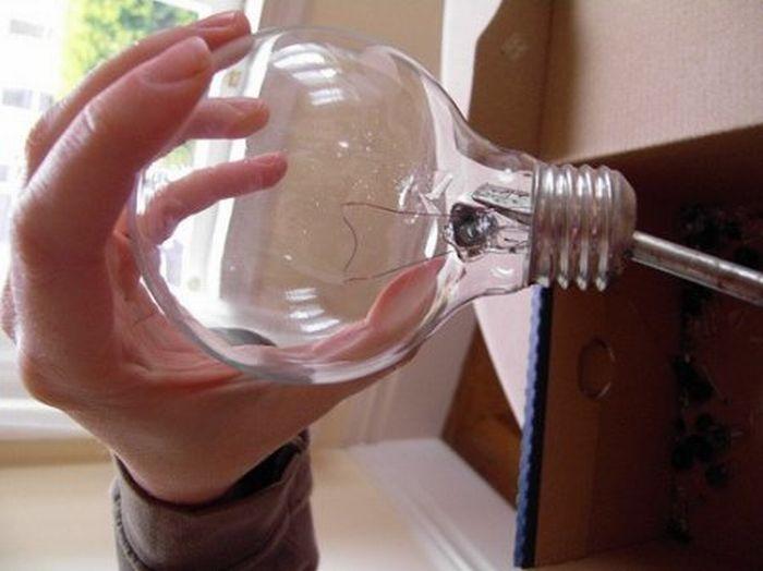 http://de.trinixy.ru/pics4/20110418/exotic_light_bulbs_07.jpg